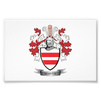 Martin Coat of Arms Photo