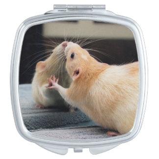 Marty Mouse Mirror Mirror