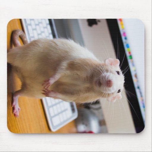 Marty Mouse Mousepad - Computer Mouse