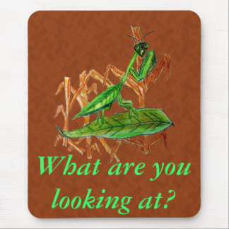 Marty The Praying Mantis Mouse Pad