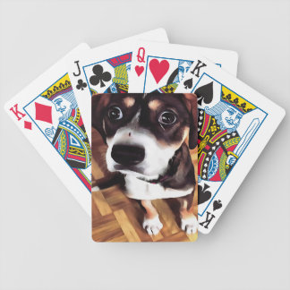 Marty The Soulful Eyed Dog Bicycle Playing Cards