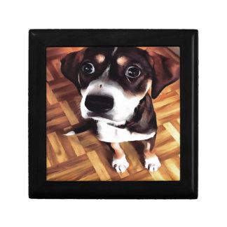 Marty The Soulful Eyed Dog Gift Box