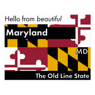 Maryland The Old Line State Postcard
