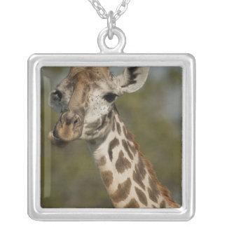 Masai Giraffe, Giraffa camelopardalis Square Pendant Necklace
