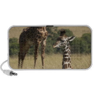 Masai giraffes, Giraffa camelopardalis iPod Speakers