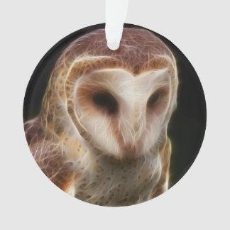 Masked Owl Fractal