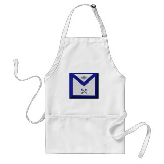 Masonic Treasurer Apron