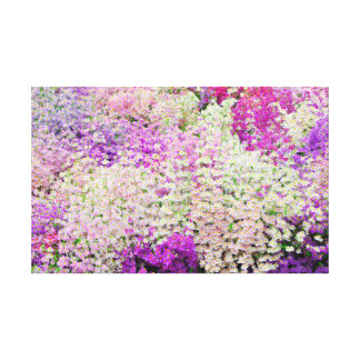 Mass of Purple Poor Mans Orchids Canvas Print