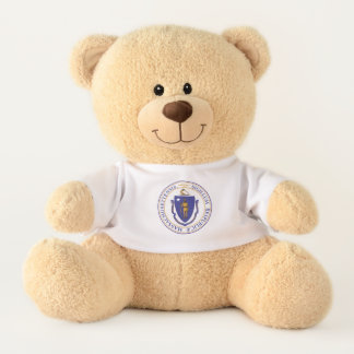 Massachusettes State Flag Teddy Bear