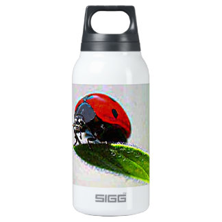 Massachusetts Ladybug Insulated Water Bottle