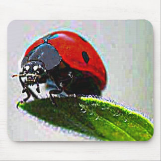 Massachusetts Ladybug Mouse Pad