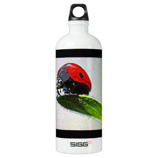 Massachusetts Ladybug SIGG Traveller 1.0L Water Bottle