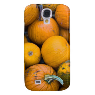 Massachusetts, Salisbury, pumpkins, autumn Samsung Galaxy S4 Cover