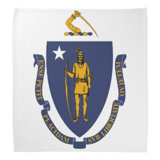 Massachusetts State Flag Bandana