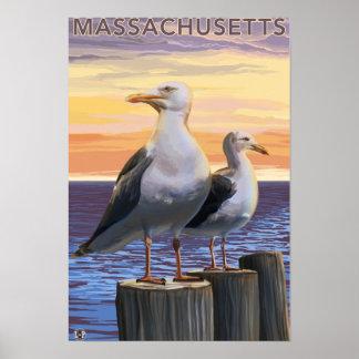 MassachusettsSea Gulls Scene Poster