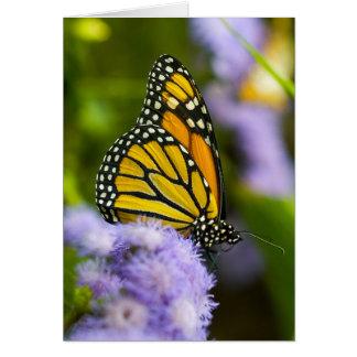 """""""Masterful Monarch"""" Card"""