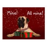Mastiff Christmas Post Cards