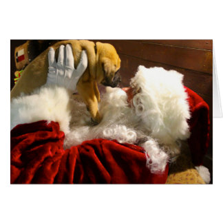 Mastiff Puppy with Santa Christmas Card