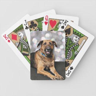 Mastiff X - Berkeley Bicycle Playing Cards