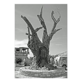 Matala. A tree in memory of the hippies. Photo Print