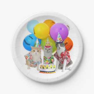Matching Plates for Funny Cat Invitations 7 Inch Paper Plate