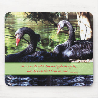 Mates for Life Black Swans with Love Quote Mousepad