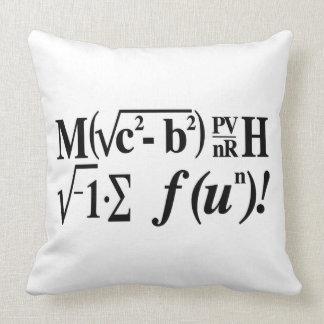 Math is Fun! Throw Pillow