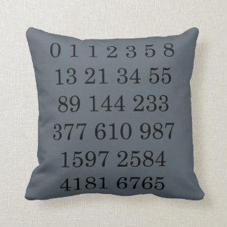 Mathematics Science Gift for Geek Math Pillow