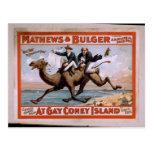 Mathews & Bulger, 'At Gay Coney Island' Vintage Th Post Card