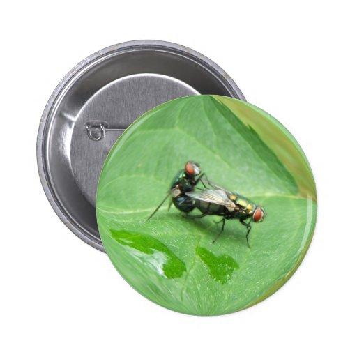 Mating Flies ~ button