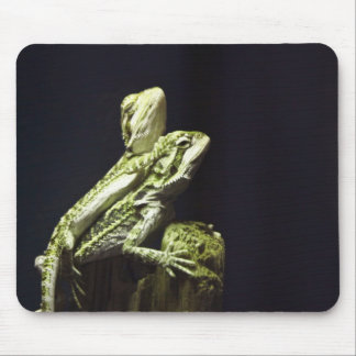 Mating Lizards Mouse Pads