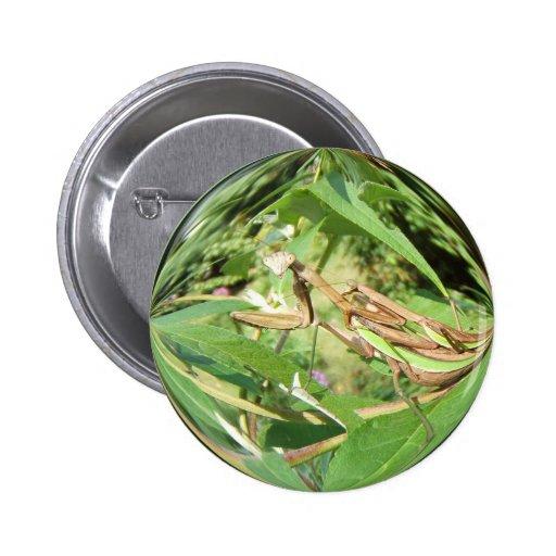 Mating Mantis ~ button