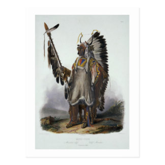 Mato-Tope, a Mandan Chief, plate 13 from Volume 2 Postcard