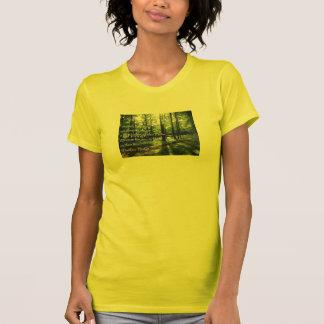 Matthew 13:43 Woman's Tee Shirt