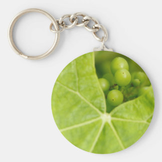 Maturing grapes key ring