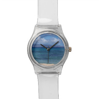 Maui Beach Watch
