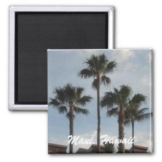 Maui Hawaii Palm Trees Magnet