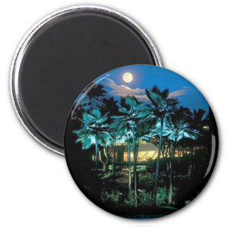Maui Perfect Magnet