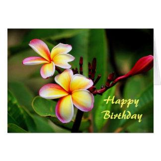 Maui Plumeria Flowers, Birthday Greeting Card