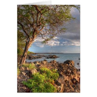 Maui shoreline card