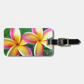 Maui Tropical Plumeria Flowers Luggage Tag