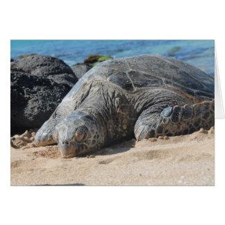Maui Turtle Card