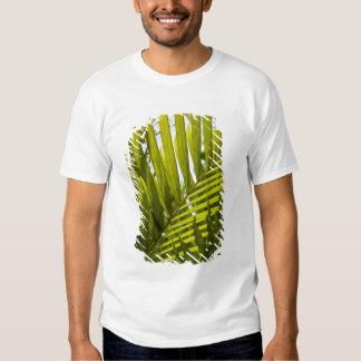 Mauritius, Central Mauritius, Moka, palm 2 Tee Shirt