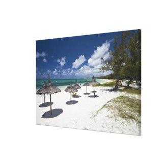 Mauritius, Eastern Mauritius, Belle Mare, Canvas Print