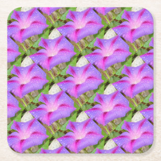 Mauve and Magenta Morning Glory with Water Drops Square Paper Coaster