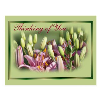 Mauve Lilies Blank Postcard or personalize it