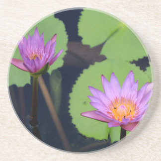 Mauve pink water lilies coaster
