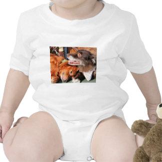 Max - Gold Retver Charlie Brwn - Aust Shep Photo-2 Tee Shirt