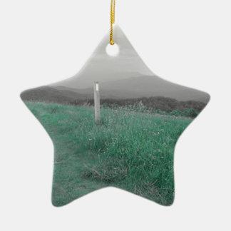 Max Patch Ceramic Ornament