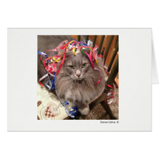 Max the Cat   #-7 Card
